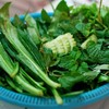 ผักผักผักผักผักผักผักผักผัก มาเป็นตระกร้า รีฟิลได้เรื่อยๆค่ะ