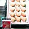 Sun Fruits Mitsukoshi, Ginza