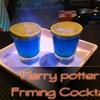 แฮรี่พอตเตอร์เฟรมมิง