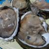 หอยนางรมสดๆ