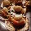 หอยเชลล์เผาเนยกระเทียม