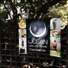 Ocean Delicious Drinks