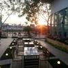 My Company Cafe'&Restaurant