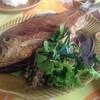 ลาบปลาตะเพียน