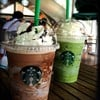 chocolate cream chip + java chip & green tea freb