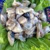 ซูม..หอยนางรม