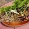 ปลาสำลีทอดน้ำปลา ตัวเล็กไปหน่อยแต่ทอดอร่อย