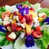 สลัดผักผลไม้