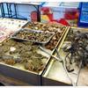 กุ้ง ปู หอย ปลาหมึก