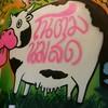 คุณวัว 😜😜😜