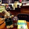 หมีบารีสต้าได้ 2016 Starbucks Planner สีเขียว @ Starbucks Mbk Cinemy City 7 Fl