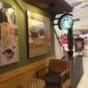 Starbucks The Mall บางแค