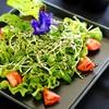 Organic Veggie Salad