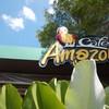 DD670 - Café Amazon ปตท.หจก.ละงูปิโตรเลียม