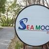 The Sea moon