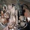 Seafolk Seafood