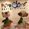 PUREDENT DENTAL CLINIC