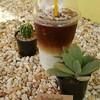 มอกใดคอฟฟี่ Mokdai Coffee