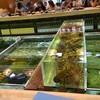 กลางร้านมีเลี้ยงปลาและกุ้งล็อบสเตอร์