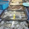 กุ้ง หมึก หอย ปู ปลา จัดมาพร้อม เติมเรื่อยๆ