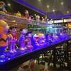 Hulk Coffee & Restaurant