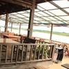 ครัวเอกปลาเผา 2 บ้านท่ามะเฟือง
