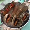 หอยใหญ่ 🐚