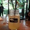 น้ำผึ้งโซดา