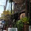 Ton Mamuang Cafe & Dessert