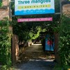 Three Mangoes ริมน้ำ พระราม 5 นนทบุรี