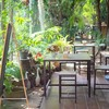 บรรยากาศ The Garden Eatery