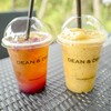 Raspberry Lemonade Iced Tea + Peach & Passion Fruit Smoothies