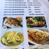 หอยป้ายแดง Phuket