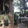 บรรยากาศ Treat Cafe & Hang Out เสนา