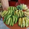 กล้วยจากสวน