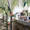 Divana Signature Cafe