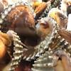 เมนูของร้าน แห้วซีฟู๊ด ปูดอง หัวปลาหม้อไฟ