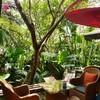 Cafe De Oasis