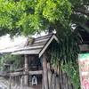 ร้านป่า-ลาบ