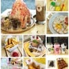 Sweety Bear Cafe
