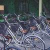 มีจักรยานให้ยืมหรือเช่าด้วย อันนี้ไม่แน่ใจ