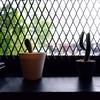 Wayla Cafe