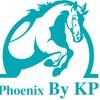 รูปร้าน Phoenix Riding By KP