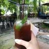 Fernpresso Cafe
