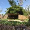 บ้านต้นเค้ก