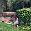บ้านสวนคำสุข cafe'