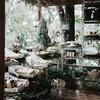 รูปร้าน Forest Bake CNX