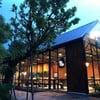 ต้นตาล โรงแรมเดอะแกรนด์ริเวอร์ไซด์ พิษณุโลก