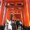 Torii Gate ฝั่งเดินขึ้นเขา