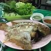 ต่ายเมี่ยงปลาเผา